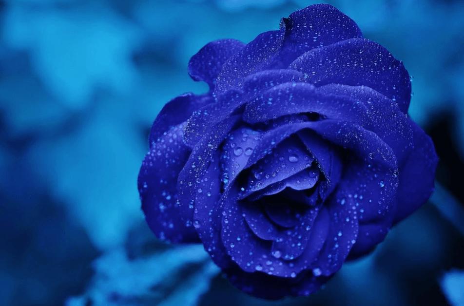 terapia de colores, color azul